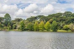 Sao Bernardo jezioro Zdjęcie Royalty Free
