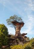 Sao Chaliang Landscape, Amazing Natural of rock Royalty Free Stock Photo