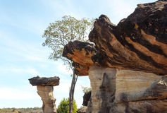 Sao Chaliang Landscape, Amazing Natural of rock Stock Photos