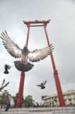 Sao Chingcha Wat Suthat Flying Pigeon Stock Photo