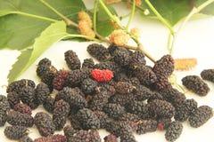 Sao delicioso Paulo Brazil de la agricultura del jugo de Blackberry de la fruta de la vitamina roja de la comida imagenes de archivo