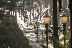 Sao joao Avenue Royalty Free Stock Images