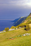 Sao Jorge, Azores Royalty Free Stock Image