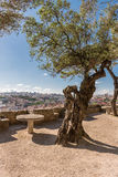 Sao Jorge Castle inside view. The castle  is located at the hist Stock Photography