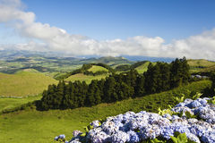 Sao Miguel Stock Photography