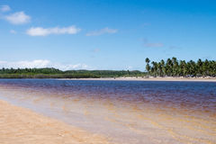 Sao Miguel dos Milagres - Alagoas, Brazil. River view in Sao Miguel dos Milagres - Alagoas, Brazil Royalty Free Stock Photography