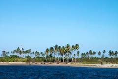 Sao Miguel dos Milagres - Alagoas, Brazil. River view in Sao Miguel dos Milagres - Alagoas, Brazil Royalty Free Stock Photo