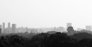 Sao Paulo Skyline Stock Images