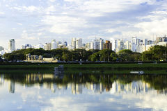 Sao Paulo Skyline, Brazil. The Pantanal is the world's largest tropical wetland areas located in Brazil , South America stock photos