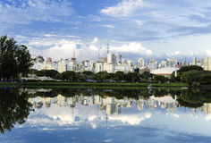 Sao Paulo Skyline, Brazil. The Pantanal is the world's largest tropical wetland areas located in Brazil , South America royalty free stock photos
