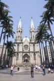 Sao Paulo Widzii Wielkomiejską katedrę Obraz Royalty Free