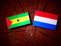 Sao Tome and Principe flag with Dutch flag on a tree stump isola. Ted Royalty Free Stock Images