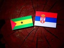 Sao Tome and Principe flag with Serbian flag on a tree stump iso. Sao Tome and Principe flag with Serbian flag on a tree stump Royalty Free Stock Photo