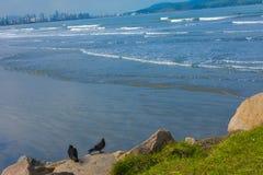 Sao Vicente beach Sao Paulo stock image