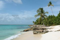 Saona beach Royalty Free Stock Photo