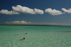 Saona en natuurlijke pools, Dominicaanse Republiek royalty-vrije stock fotografie