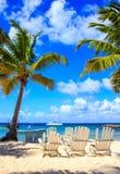 Saona island beach Royalty Free Stock Image