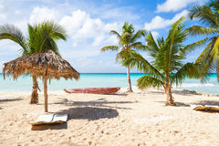 Saona island beach, touristic resort Stock Image