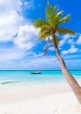 Saona island. Caribbean Sea coast Royalty Free Stock Images