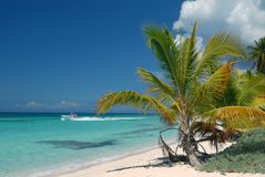 Saona,Island in the Dominican Republic is an island Royalty Free Stock Photography