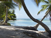 Saona Island i Dominican republic Royalty Free Stock Photography