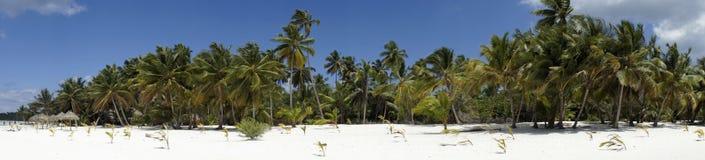 Saona island Stock Image