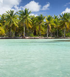 Saona Island Vertical Background. Punta Cana, Dominican Republic Stock Images