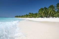 Saona: Praia da areia, oceano do Cararibe e palmeiras Fotografia de Stock Royalty Free