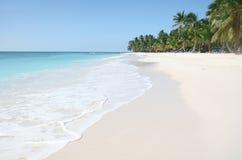Saona: Sand-Strand, karibischer Ozean und Palmen stockfotografie