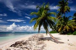 Saona strand Arkivbilder