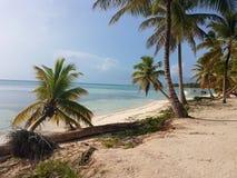 saona Tropeninsel entspannen sich Meersandfeiertag stockfotografie
