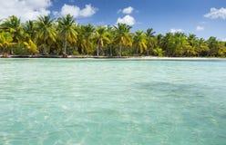 Saona Wyspa Zdjęcia Stock