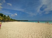 Saona wyspa, republika dominikańska Zdjęcia Stock