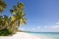 Saona wyspa w Punta Cana, republika dominikańska zdjęcie royalty free