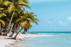 Saonaeiland dichtbij Punta Cana, Dominicaanse Republiek stock foto