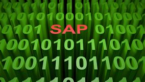 SAP in the binary code - 3D rendering. SAP is written with red letters inside a screen full of green zeros and ones representing the binary code of the low level Royalty Free Stock Photography