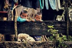 Sapa,越南- 2012年12月29日, :两个孩子看看睡觉狗 免版税库存图片