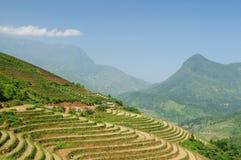 sapa Βιετνάμ ρυζιού ορυζώνα στοκ εικόνες