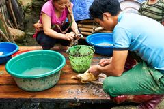 Sapa, Βιετνάμ - 22 mai 2019 Οι τοπικοί άνθρωποι προετοιμάζουν το κοτόπουλο για το γεύμα στο λαοτιανό valey sapa chai στο Βιετνάμ στοκ εικόνα με δικαίωμα ελεύθερης χρήσης