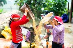 Sapa Вьетнам Стоковые Фото
