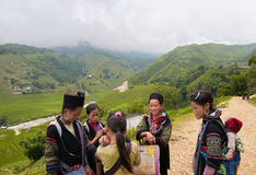 Sapa Royalty Free Stock Image