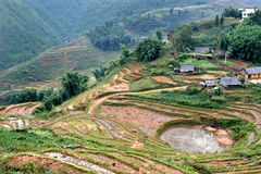 Sapa Stock Photography