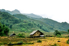 Sapa. View of Sapa hut with terraces and mountain on the way from Cat Cat valley to SAPA town royalty free stock photos