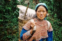 Young flower hmong tribe member woman on the way home high up in the mountains. Sapa, Baha/ Vietnam - AUG 5 2010: young flower hmong tribe member woman on the royalty free stock image