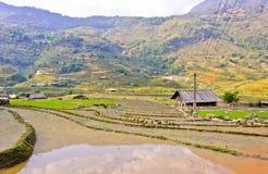 Sapa countryside view Stock Image