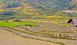 Sapa hill tribe view Royalty Free Stock Images