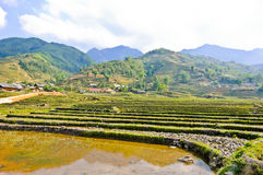 Sapa mountain view Royalty Free Stock Photo