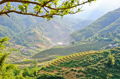 Sapa moutain view Royalty Free Stock Image