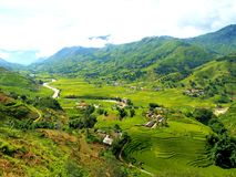 Sapa Rice Field Rice Terrace in Vietnam. royalty free stock photos