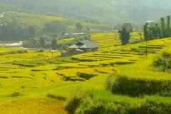 Sapa und Vietnam Lizenzfreies Stockbild